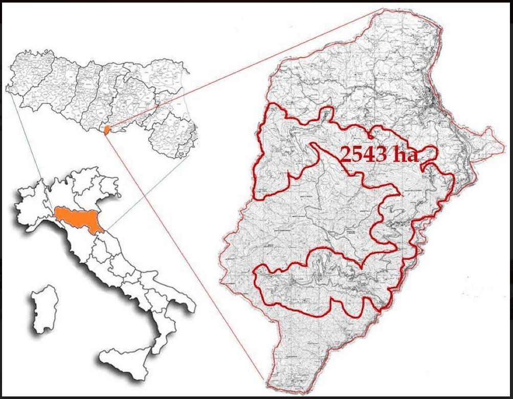 Indicazione geografica la Corona di Matilde