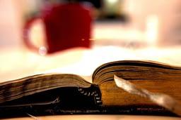 La clavicola di San Francesco, autore