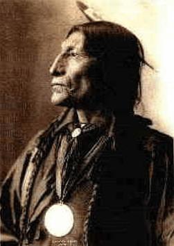 Lupo Grigio - capo indiano