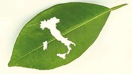 transizione verde - Italia green