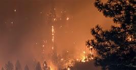 Patto per il clima - incendi