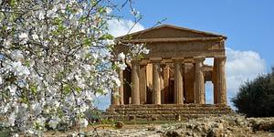 Taste&Win - Tempio di Segesta