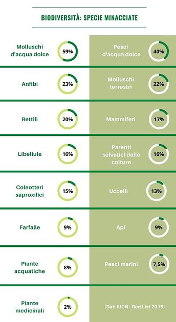Biodiversità: specie a rischio (infografica)