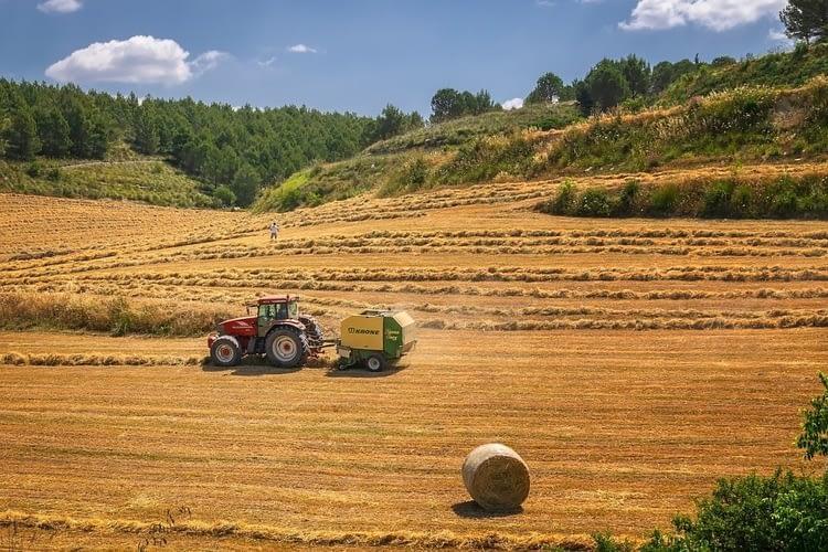 Soluzioni ispirate alla natura in campo agricolo