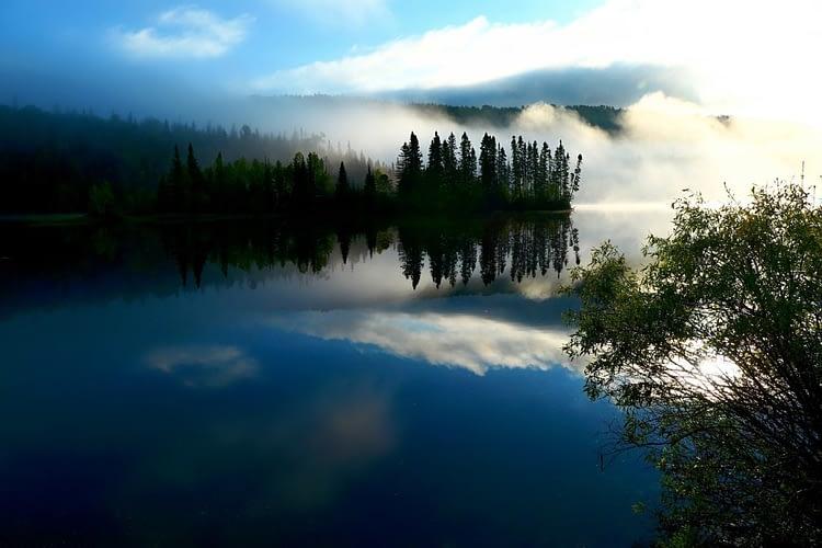 natura nella zona fluviale