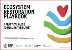 Guida pratica della Giornata Mondiale dell'Ambiente 2021