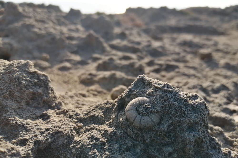 Puglia - paesaggi geologici