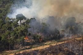 Amazzonia - Incendi dolosi