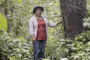 Amazzonia - Gli indios sono strenui difensori della foresta