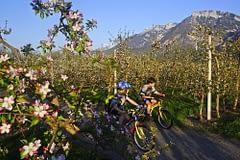 cicloturismo - Ciclabile Val Sugana, Trentino