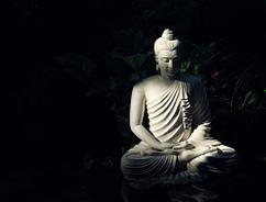 Armonia con la natura - Quella del buddismo è una visione che più si avvicina a quella ecologica
