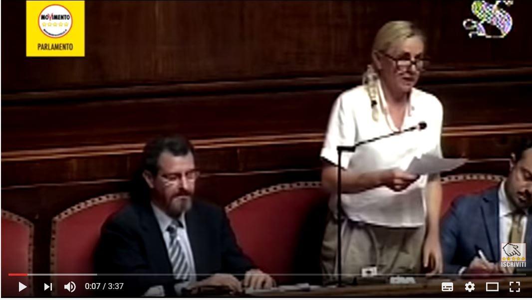 Senatrice Sara Paglini