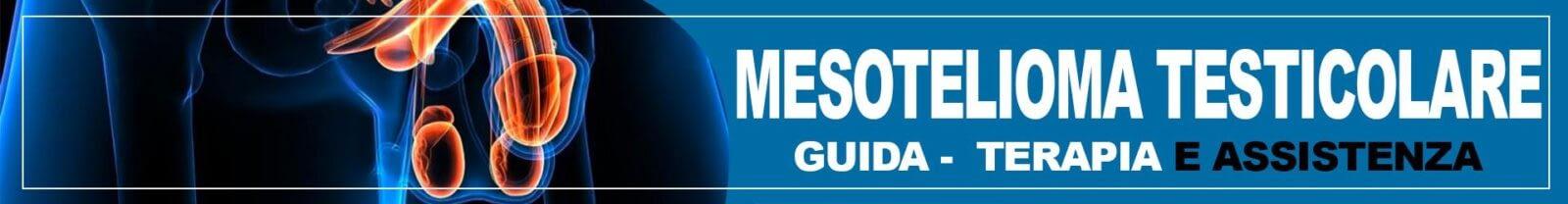 Mesotelioma Testicolare