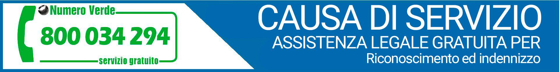 causa-servizio-assistenza